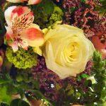 Les expressions se rapportant aux fleurs